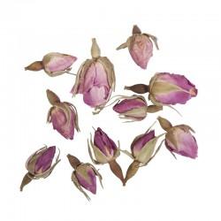 Szárított virág - Rózsabimbó, 7 g